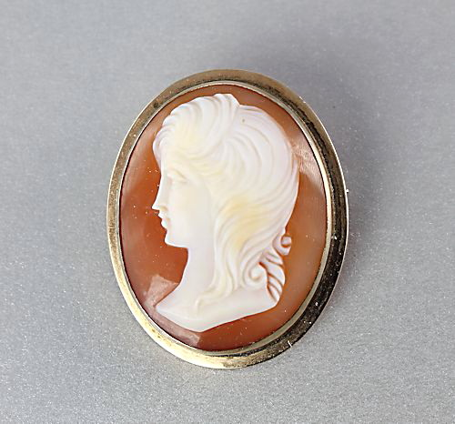 Vintage 14k gold cameo brooch pendant left facing we present a lovely carved shell cameo mounted in a 14k yellow gold frame the piece can be worn as a brooch or as a pendant the cameo is left facing and aloadofball Images